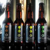 Cerveza Ocean Lab Blonde Ale (330 ml.)