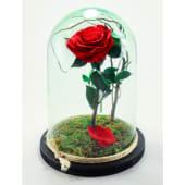 Rosa eterna roja en cristal