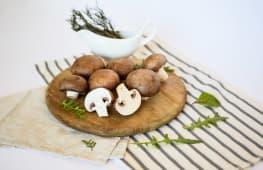 Ciuperci Champignon brune