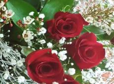 Ramo de 3 Rosas Rojas y paniculatas blancas