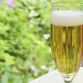 Cerveza Montecarlo (330 Ml.)