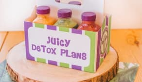 Detox Plan 1 día completo