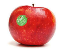 Pommes Bio Juliet - 4 pièces environ : 1 kg