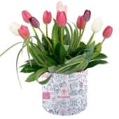 Arreglo Sombrerera con 12 tulipanes colores varios