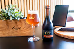 Cerveja Artesanal 1927 Munich Dunkel 33cl
