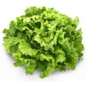 Salade batavia (par pièce)