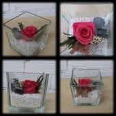Rosa Preservada en Cristal