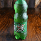 Ginger Ale Light (1/2 lt.)