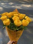 ყვითელი ჰოლანდიური ვარდი