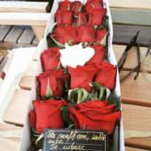 Cutie 15 trandafiri