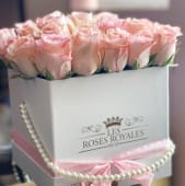 Glam Pink Roses