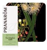 Eukaliptus radiata eterično ulje