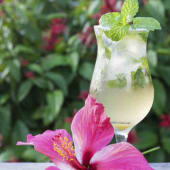 Limonada Natural (12 Oz.)