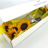 Cutie HomeFlowers - Floarea Soarelui