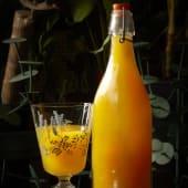 Kombucha de Mango (500 ml.)