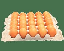 Grade Eggs