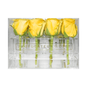 Rosas amarillas con caja acrílica (16 uds)