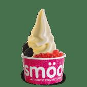 Tarrina yogurt-special