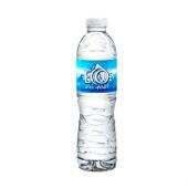 Agua Eco de los Andes sin gas (500 ml.)
