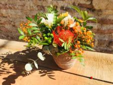 Maceta terracota con flor temporada