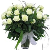 Rosas blancas (12 uds.)