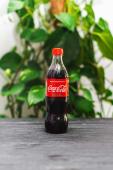 Coca-Cola (500мл)
