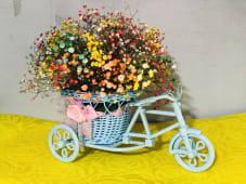 ფერადი ველოსიპედი