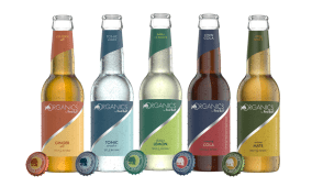 Ginger Ale Organics by Red Bull