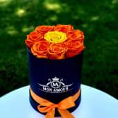 Trandafiri criogenati in cutie rotunda neagra