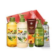 Set Îngrijire Mango & Coriandru - 5 produse
