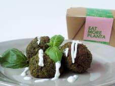 Proteina Extra - Falafel com Espinafres e Manjericão