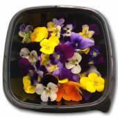 Flores comestibles 30gr