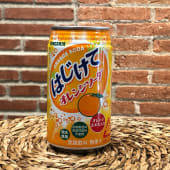 Orange Soda (33 cl.)