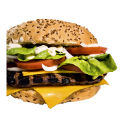 Hamburgerdevita