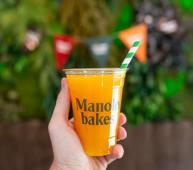 Zumo de naranja (240cl)
