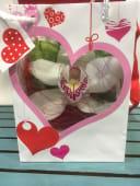 Bolsa corazón con Orquídea