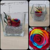 Rosa arcoiris preservada en cristal