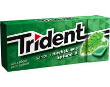 Trident Spearmint 14.5g