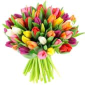 Buchet din 51 lalele multicolore