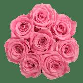 Rosas rosas eternas en caja redonda (7-8 uds)