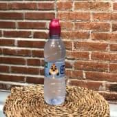 Agua Font Vella (33 cl.)