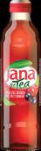 Jana Ice Tea Šumsko voće
