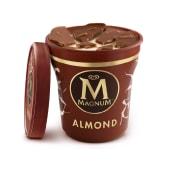 Tarrina Magnum Almond (440 ml.)