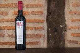 Vino Baigorri DO RIOJA (750 ml.)