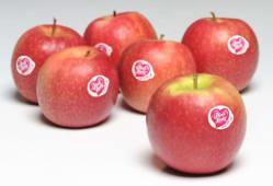 Mele pink