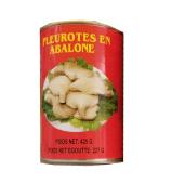 Cogumelo abalone em lata 425g