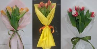 Buket 5 tulipana