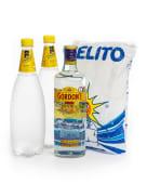 Pack Gin Tónica Gelo