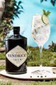 Gin Tonic -Gin Hendrick's