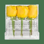 Rosas amarillas con caja acrílica (9 uds)